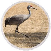 Sand Hill Cranes Round Beach Towel