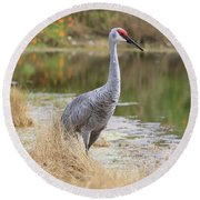 Sandhill Beauty By The Pond Round Beach Towel