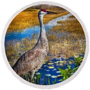 Sandhill Crane In The Glades Round Beach Towel