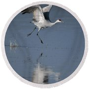 Sandhill Crane Running On Water Round Beach Towel