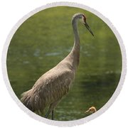 Sandhill Crane With Baby Chick Round Beach Towel