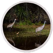 Sandhill Cranes And Chicks Round Beach Towel