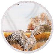 Sandhill Cranes-jp3161 Round Beach Towel