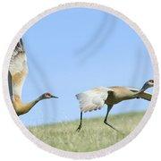Sandhill Cranes Taking Flight Round Beach Towel