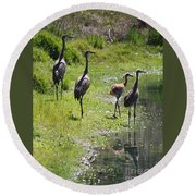 Sandhill Family By The Pond Round Beach Towel