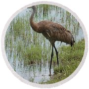 Sandhill In The Marsh Round Beach Towel