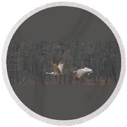 Sandhills In Flight Round Beach Towel
