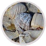 Sanibel Island Seashells Iv Round Beach Towel