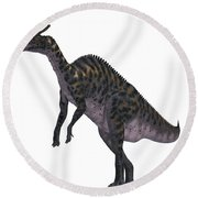 Saurolophus Dinosaur On White Round Beach Towel