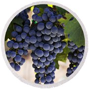 Sauvignon Grapes Round Beach Towel