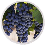 Sauvignon Grapes Round Beach Towel by Garry Gay