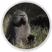Savannah Olive Baboon  Round Beach Towel