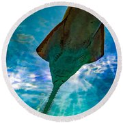 Sawfish Round Beach Towel
