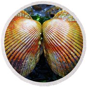 Scallop - Close Up Round Beach Towel