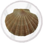 Scallop Shell Round Beach Towel
