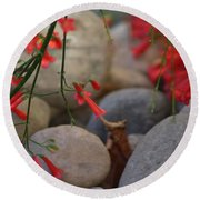 Scarlet Bugler Blossoms On Rocks Round Beach Towel