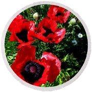 Scarlet Poppies Round Beach Towel