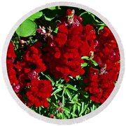Scarlet Snapdragons At Pilgrim Place In Claremont-california  Round Beach Towel