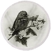 Scarlet Tanager - Black And White Round Beach Towel