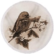 Scarlet Tanager - Tint Round Beach Towel