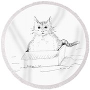 Schrodinger Cat Round Beach Towel