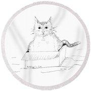 Schrodinger Cat Round Beach Towel