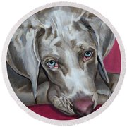 Scooby Weimaraner Pet Portrait Round Beach Towel