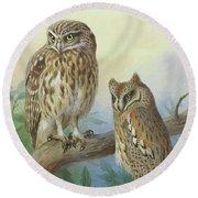 Scops Owl By Thorburn Round Beach Towel