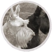 Scottish Terrier Dogs In Sepia Round Beach Towel