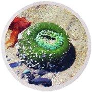 Sea Anemone Round Beach Towel