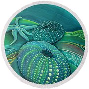Sea Anemone Kina By Reina Cottier Round Beach Towel