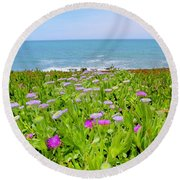 Sea Daisy Trail Round Beach Towel