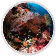 Sea Fans And Soft Coral, Fiji Round Beach Towel