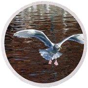 Sea Gull Landing Round Beach Towel