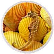 Sea Horse And Sea Shells Round Beach Towel