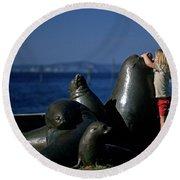 Sea Lion Sculpture  Round Beach Towel