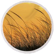 Sea Oats At Dusk Round Beach Towel