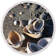 Sea Shells At Folly Beach In Charleston Sc Round Beach Towel