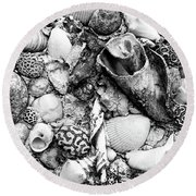 Sea Shells - Nassau, Bahamas Round Beach Towel