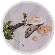 Sea Shells With Drift Wood And Small Plants Round Beach Towel