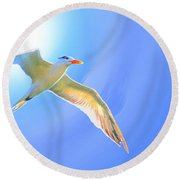 Sea Tern If I Were A Bird Round Beach Towel