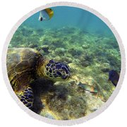 Sea Turtle #1 Round Beach Towel