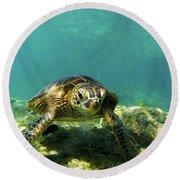 Sea Turtle #3 Round Beach Towel