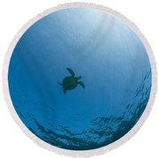 Sea Turtle Silhouette Round Beach Towel