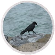 Seafaring Crow Round Beach Towel