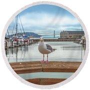 Seagull At Pier 39 Round Beach Towel