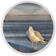 Seagull At Ravenel Bridge Round Beach Towel