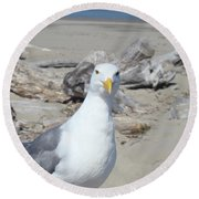Seagull Bird Art Prints Coastal Beach Driftwood Round Beach Towel