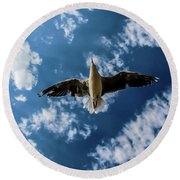 Seagull Flying  Round Beach Towel