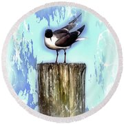 Seagull - Laughing Gull Pop Art  Round Beach Towel